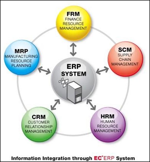 Phần mềm Sap là gì?